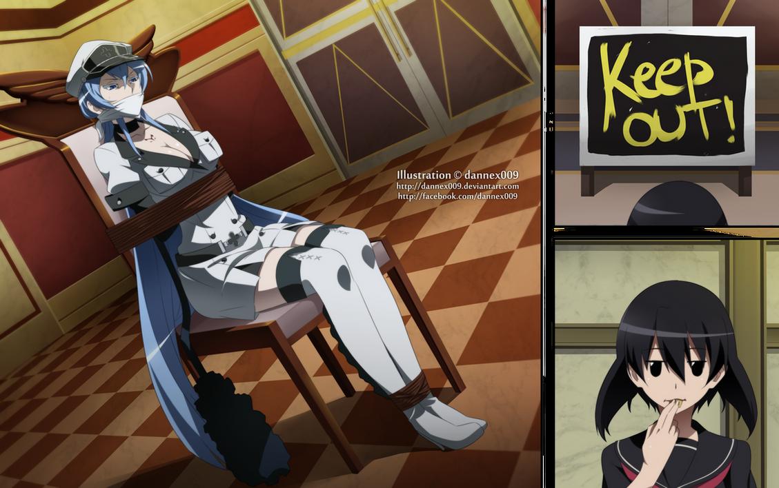 Akame ga Kill! - Kill the Invitation 9/9 by dannex009