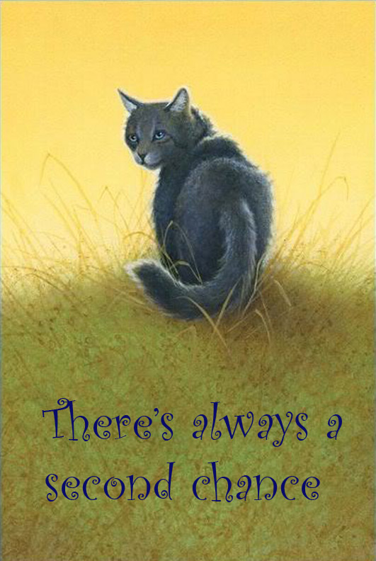 Warrior Cats Quotes Words By Iamblossom On Deviantart