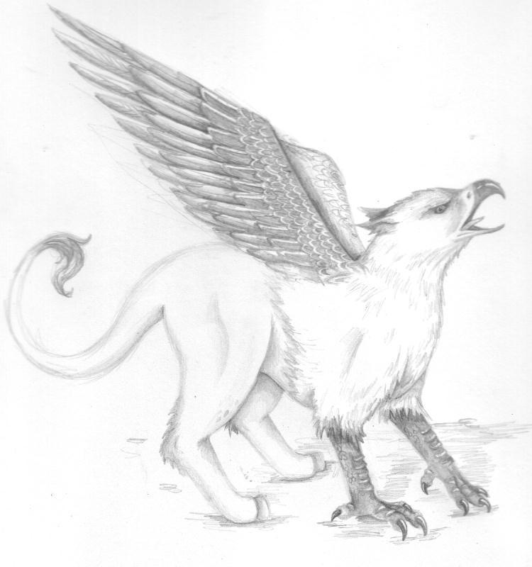 Mythical Creatures: Griffin by zepheenia on DeviantArt