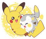 Pikachu and togedemaru