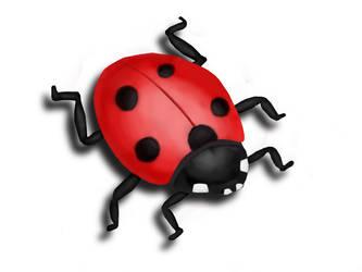 Ladybird by mangei