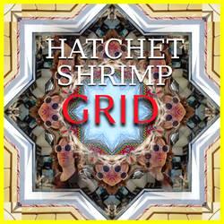 Hatchet Shrimp - Grid (unused)