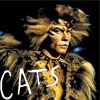 Rum Tum Tugger - Cats LondonII by Butterflusel