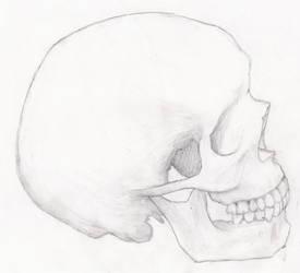 Skull by ITS-A-GUNDAM