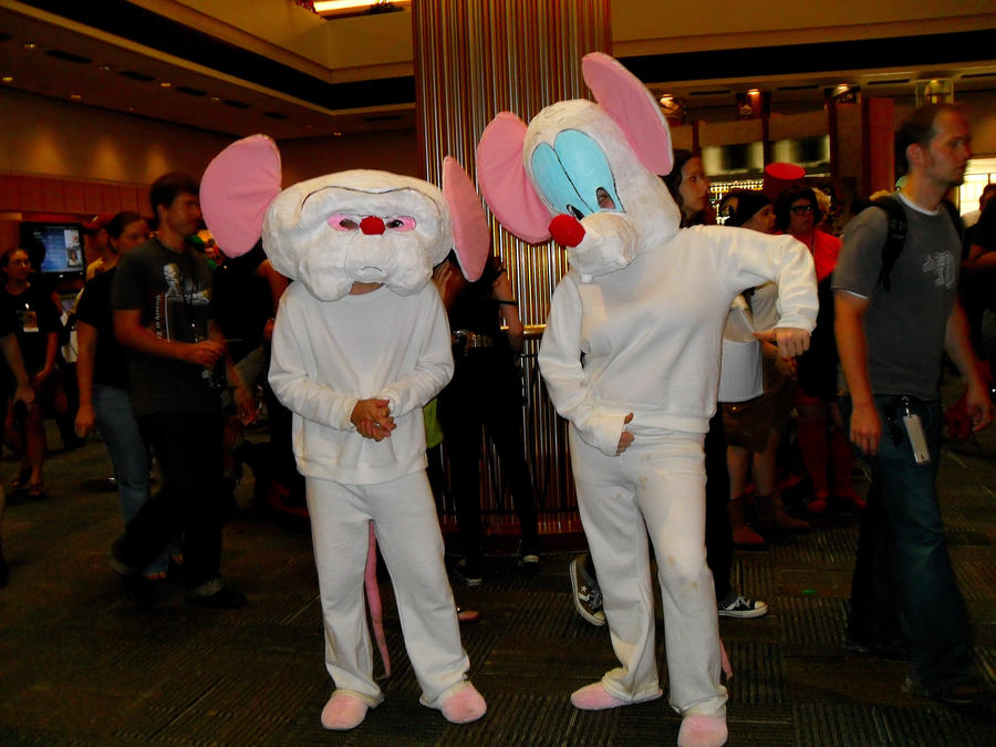 Pinky And The Brain By Senbongirl7 On Deviantart