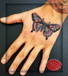 traditional sailor jerry butterfly on the hand tat