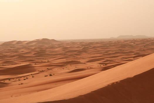 Desert 02