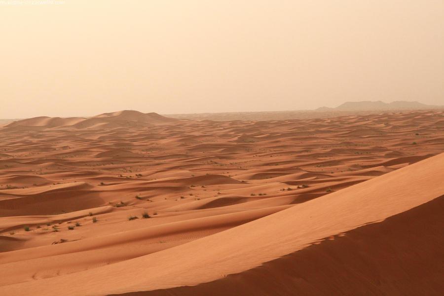 Desert 02 by neverFading-stock