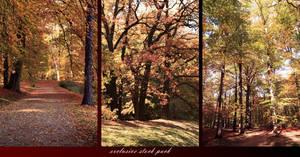Autumn Exclusive Stock Pack