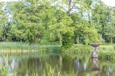 large pond 2