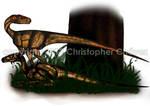 Ilustracion de Herrarasaurus