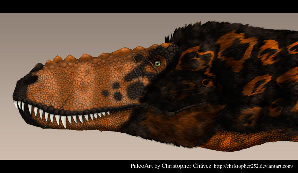 Alioramus by Christopher252