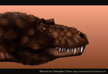 Albertosaurus sarcophagus by Christopher252