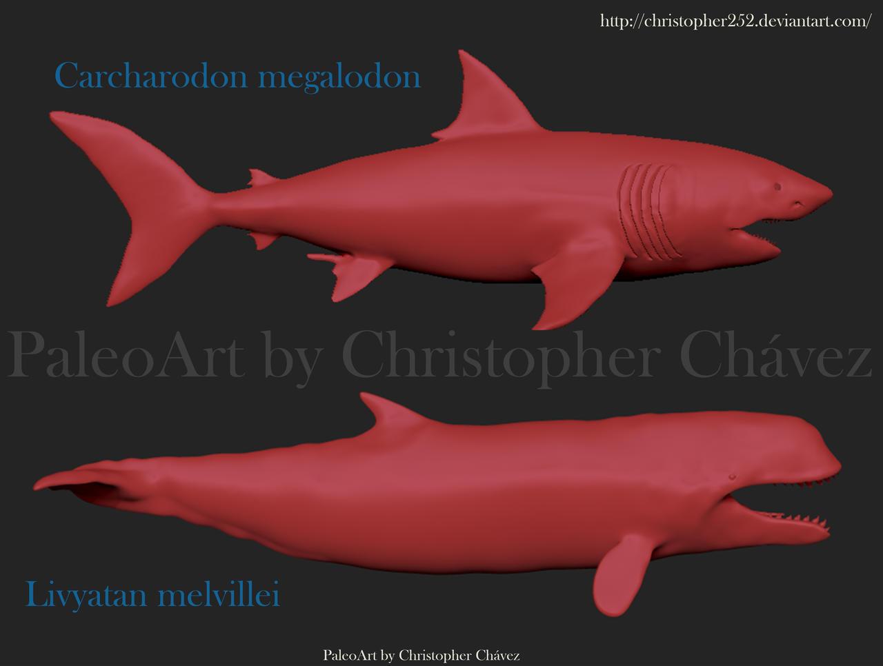 Livyatan vs Megalodon by Christopher252 on DeviantArt