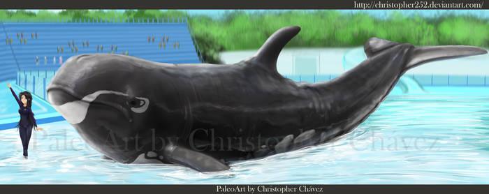 Parque acuatico Cenozoico by Christopher252