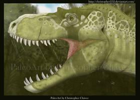 Albertosaurus (Gorgosaurus) libratus by Christopher252