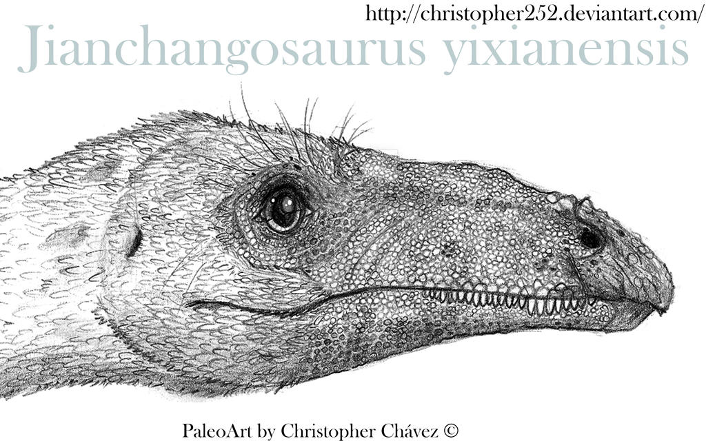 Jianchangosaurus yixianensis by Christopher252