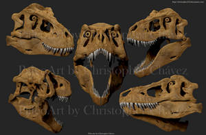 T.rex Stan BHI 3033 by Christopher252