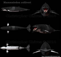 Mammalodon colliveri reconstruction 3D by Christopher252