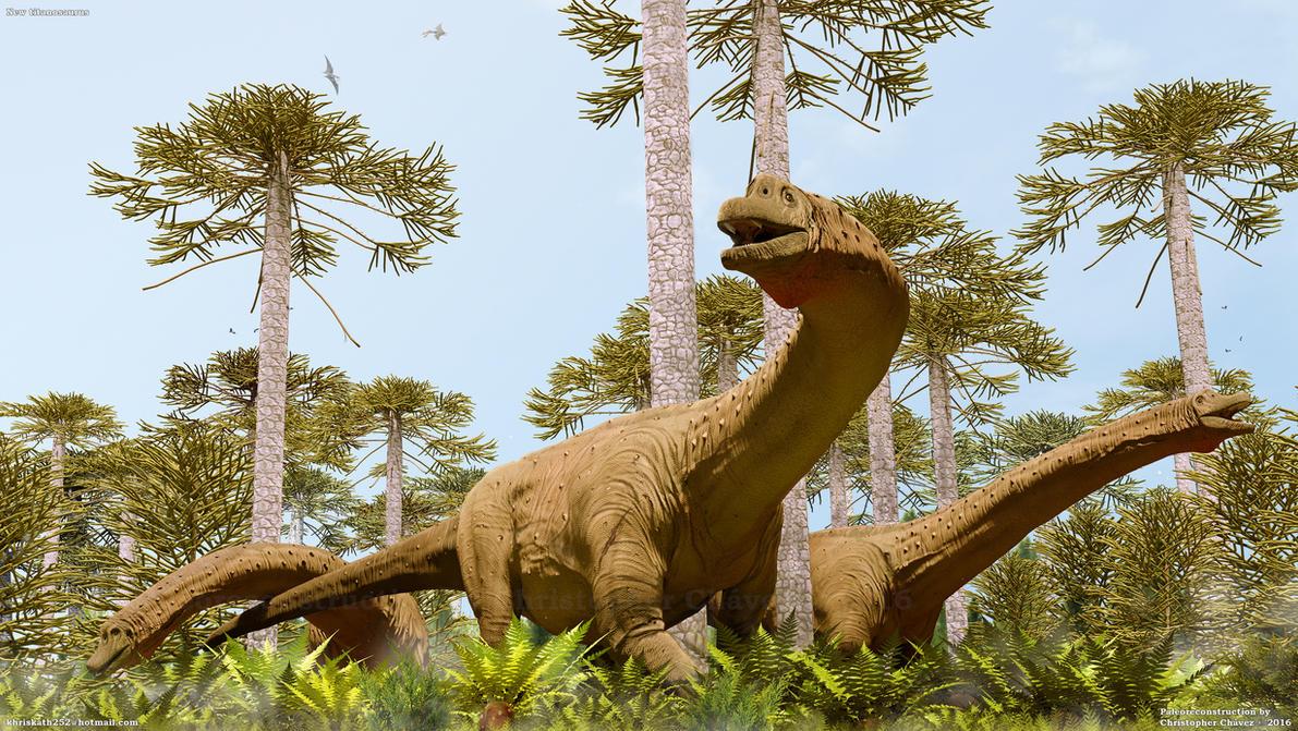 Ilustracion nuevo titanosaurio by Christopher252