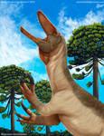 Megaraptor namunhaiquii