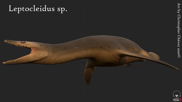 Leptocleidus sp.