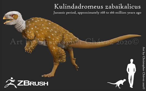 Kulindadromeus zabaikalicus