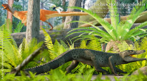 Burkesuchus mallingrandensis