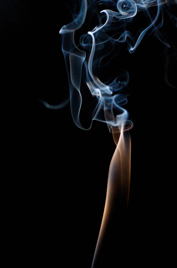 Smokey 001 by roarbinson