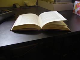 Open book 2 by sbmdestock