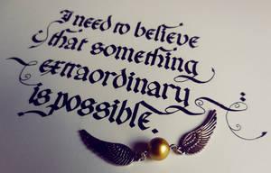 Something Extraordinary by WhiteSylver