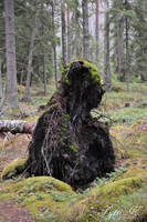 Guardian of the Woods