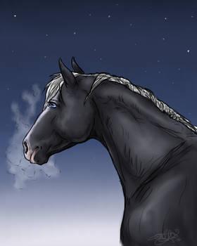 winterhorse