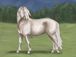 Cremello Finnhorse by KnifeInToaster