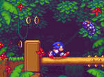 Sonic the hedgehog-Jungle zone by MarinaNT