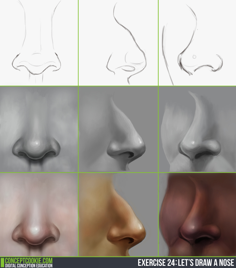 [Image: noses___daily_practice_by_olooriel-d86b2yp.jpg]