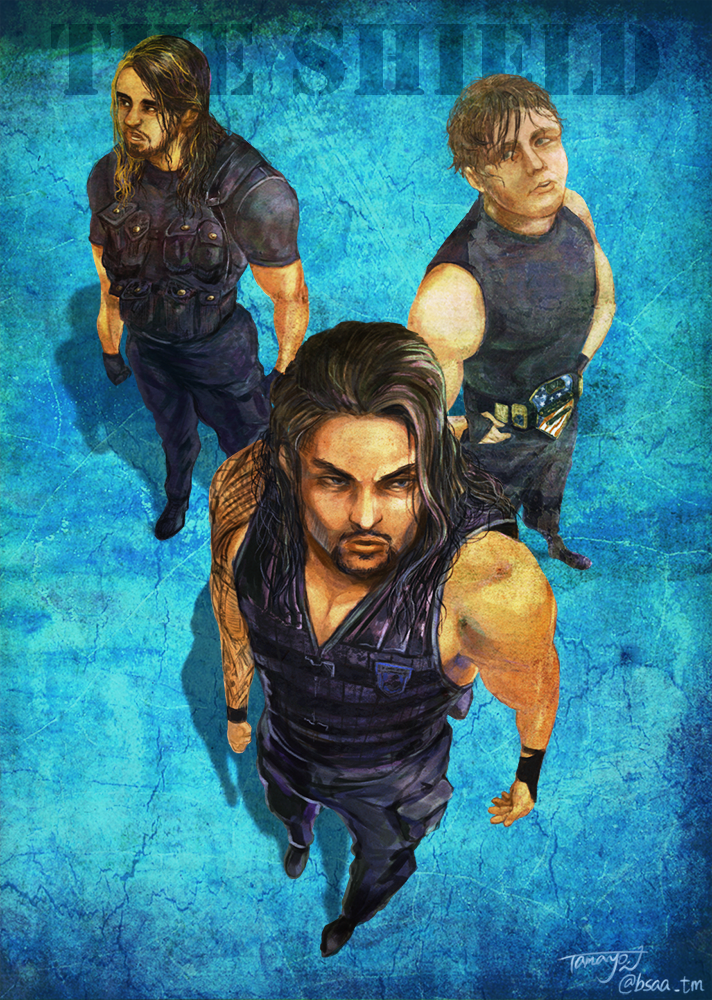 The Shield by Tamayo423