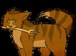 Finnick Cat