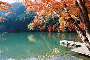 Autumn 2009 - 8 by kucingitem