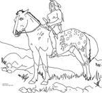 Nez Perce  on Appaloosa Horse