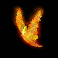 Firebird by ShiftyJ