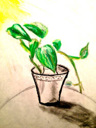 Ivy by UpsideDownEntity