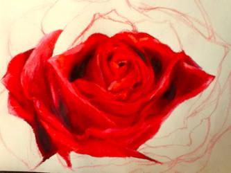 Rose WIP by UpsideDownEntity
