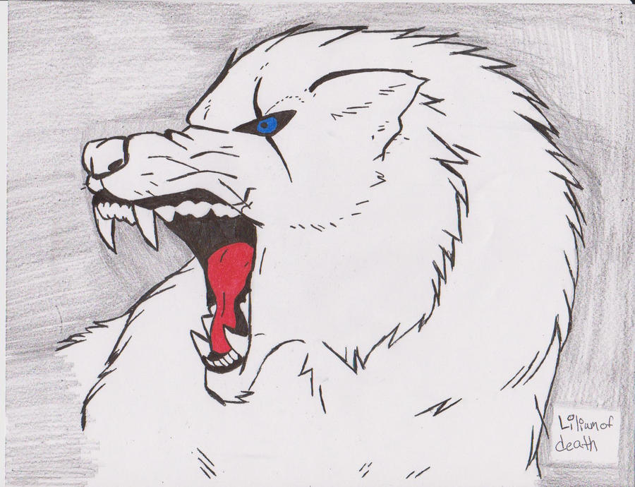Angry Wolf Pack Drawing