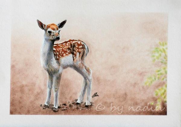 Bambi by nadinmadeamess