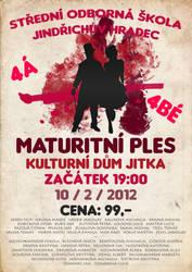 Poster - Maturitni 4A a 4B by 1janjann