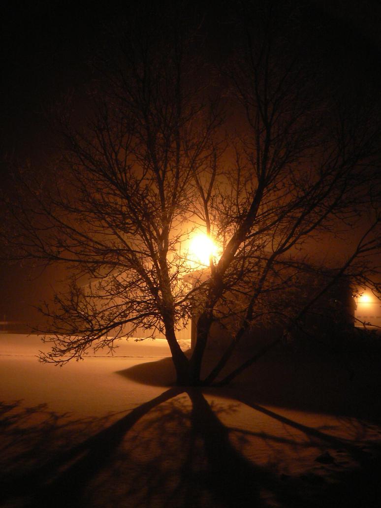 Illuminate Me by dudestock