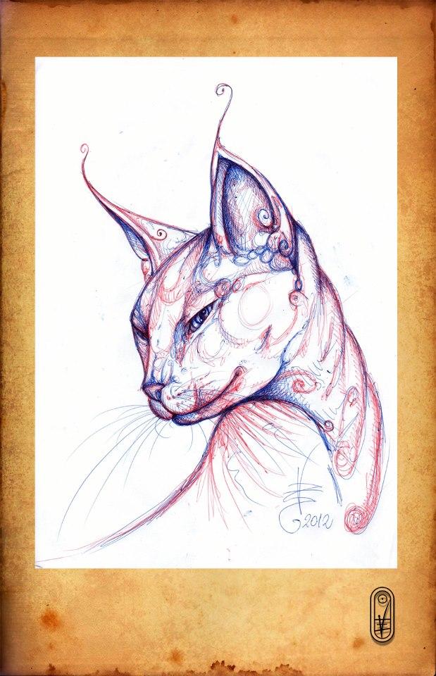 Cat Sphynx by CatBastet70