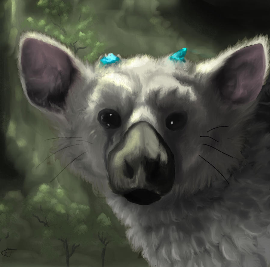 Trico by CoypuCoyote