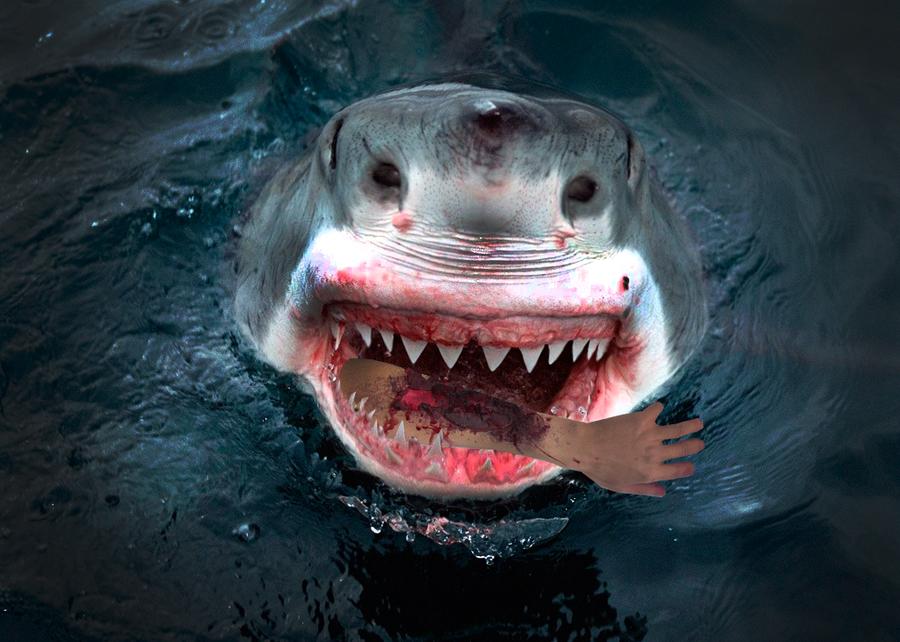 sharp teeth. a very sharp teeth by mvmdesign